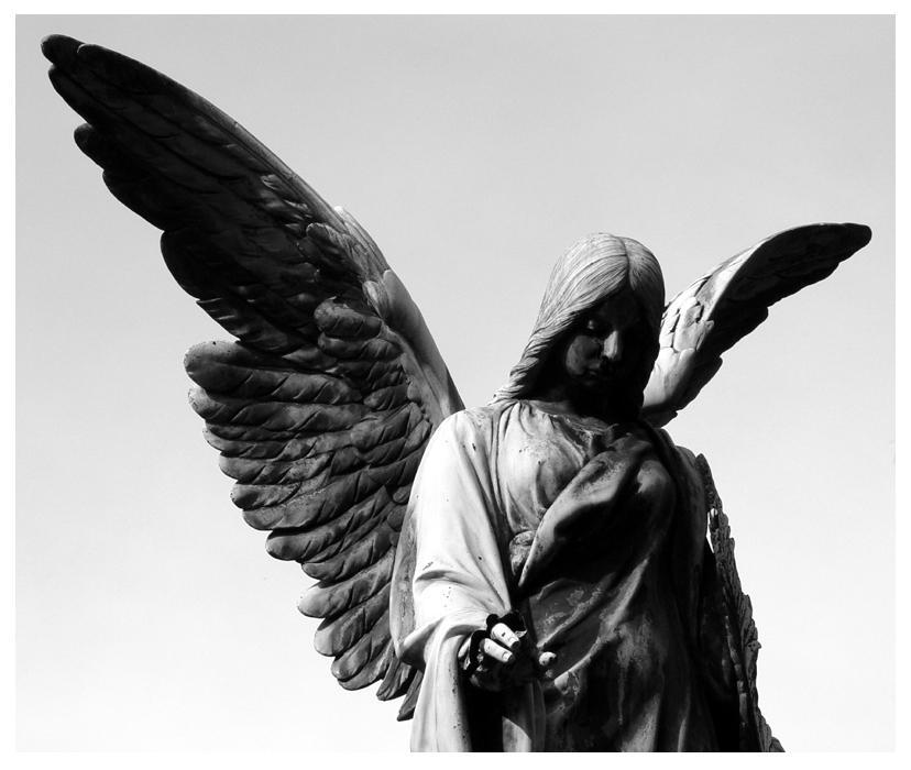 angels wings by icarus-ica
