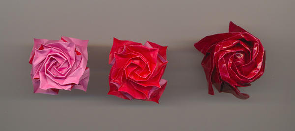 Origami roses by PitushaZee