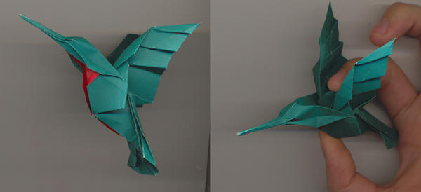 Hummingbird by PitushaZee