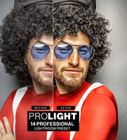 ProLight - 14 Professional Lightroom Presets by hemalaya