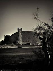Khavidak Castle B and W