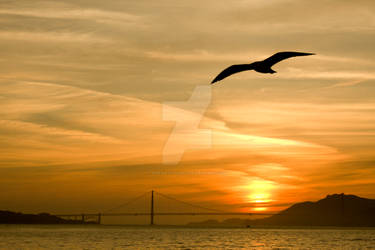 Sunset San Fransisco