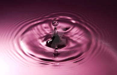 Splash 1