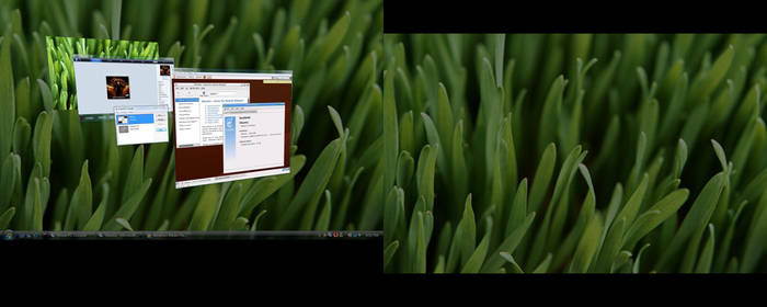 Vista and Ubuntu Linux