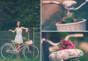 vintage bicycle by Rock-Lady