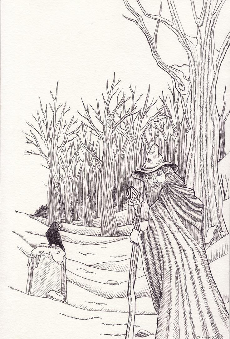 Wizard by melyanna