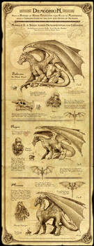 Dragonkin I by Feliche