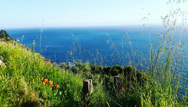 California Coast 2 by andersonbi