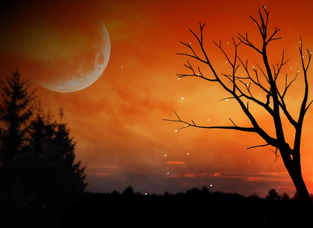 Orange Sky by P-ink-y