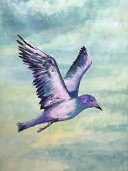 In Flight by vberus