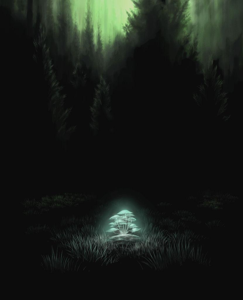 art dark car forest - photo #41