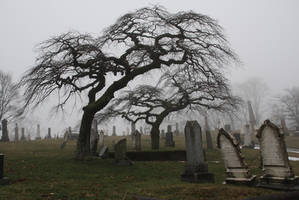 The Cemetery by PaulMcKinnon