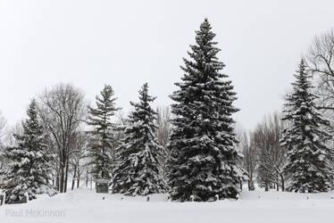 December 27 by PaulMcKinnon