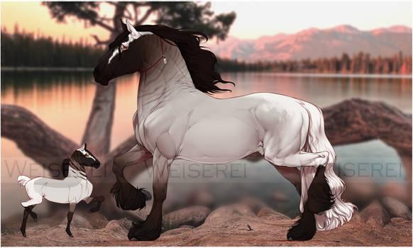 #160 Horse Adopt Auction [CLOSED]