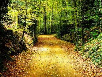 Autumn Path by BigBenFR