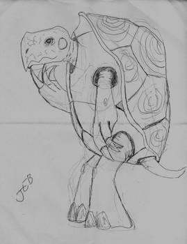 Contemplative turtle