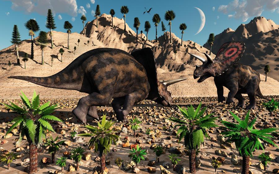 Triceratops & Torosaurus,adalah dinosaurus yang sama??