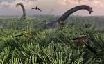 Diplodocus Forrest.