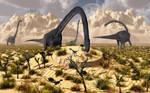 Sauropod Find.