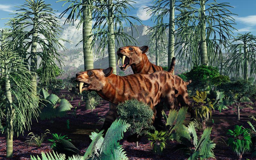 Sabeltand tijgers