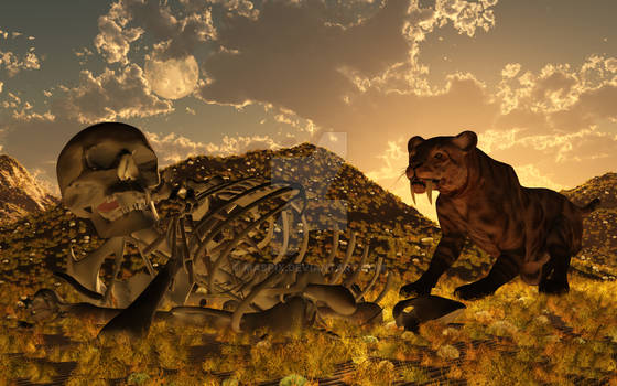A Saber-Toothed Cat,Discovering Human Remains