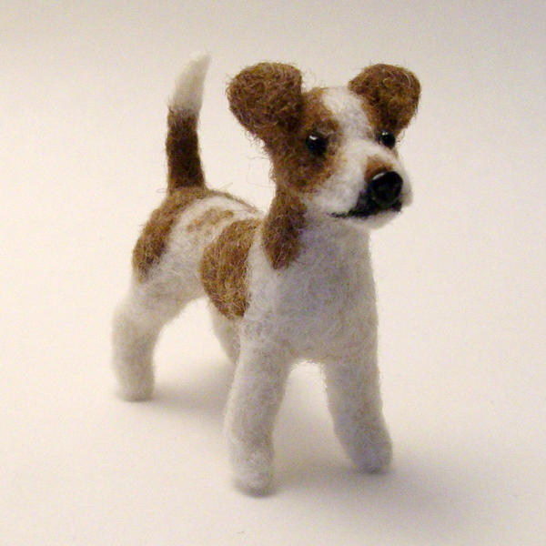 Chihuahua Jack Russell Terrier Mix Images & Pictures - Becuo