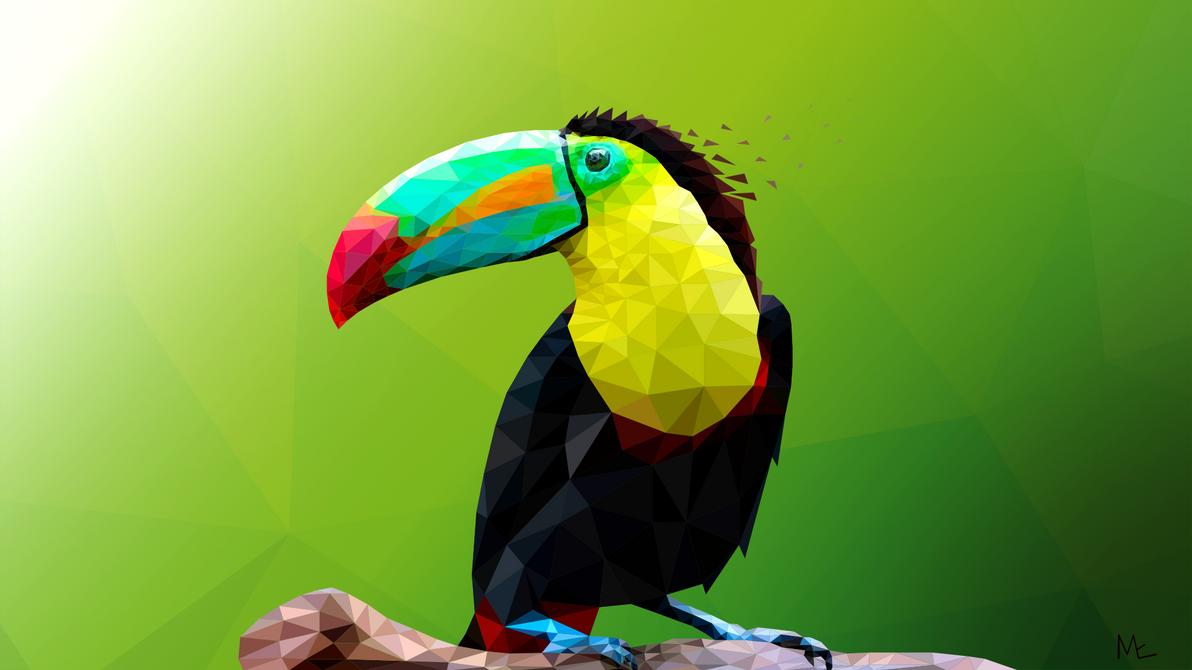 Toucan low poly art by Maye5