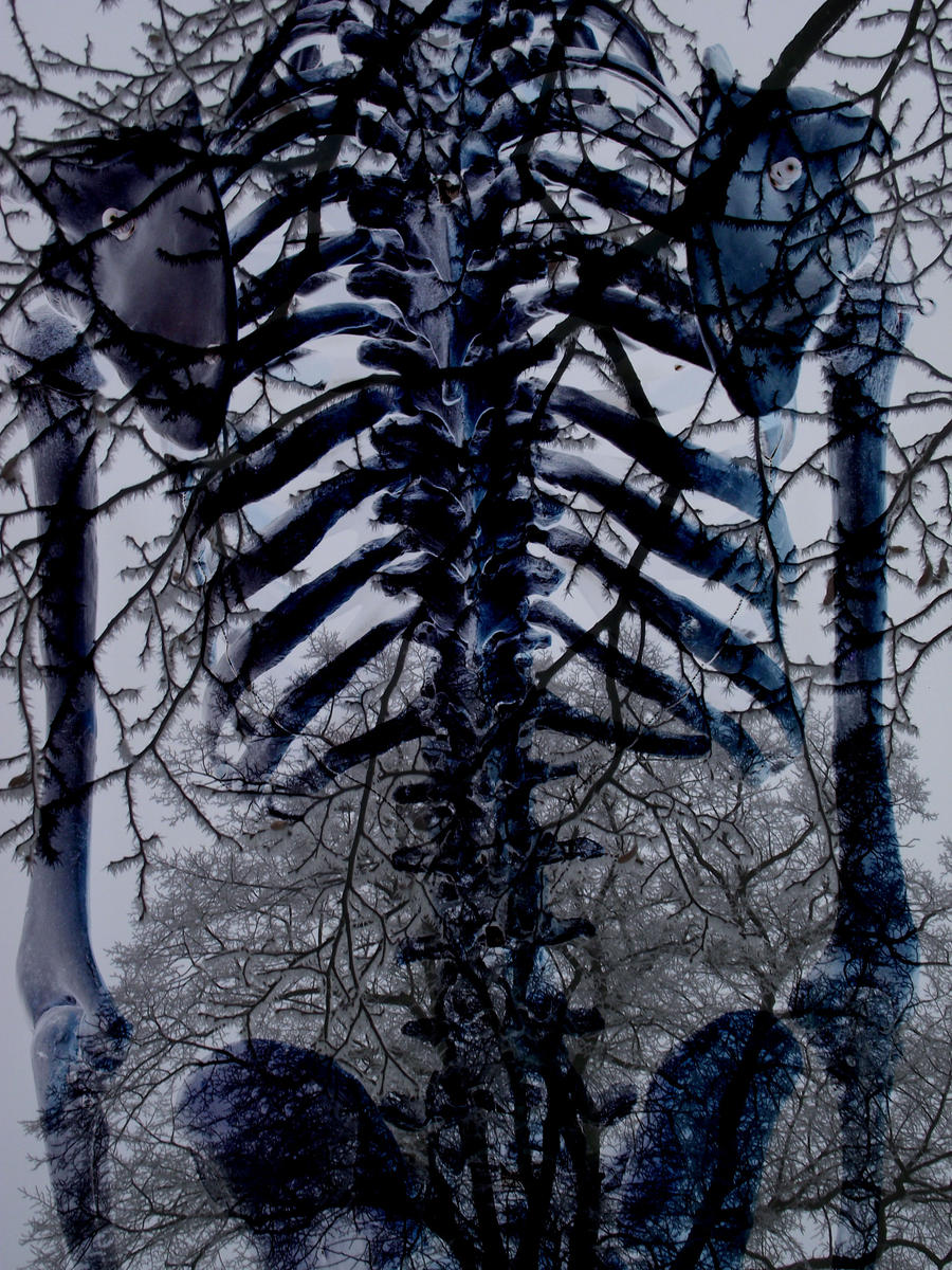 Skeleton Suit by roxanna14madalane