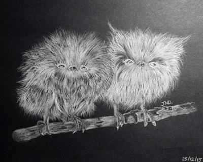 Fluffy Little Owls by Jean-DC