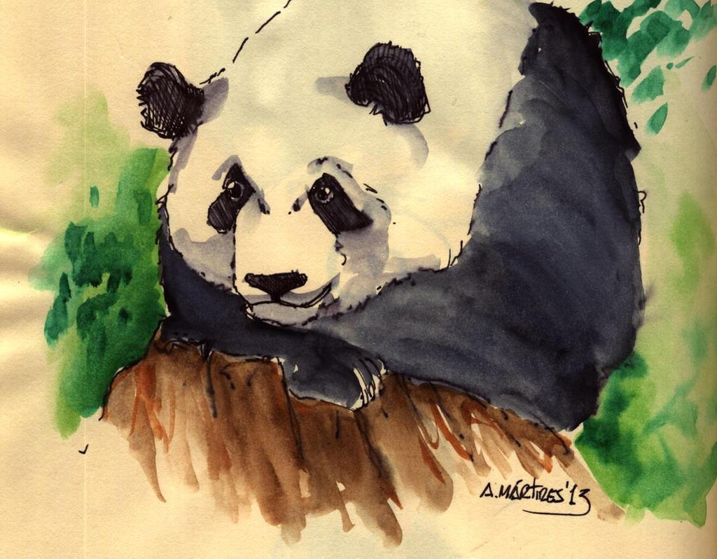 Panda Sketch by amartires
