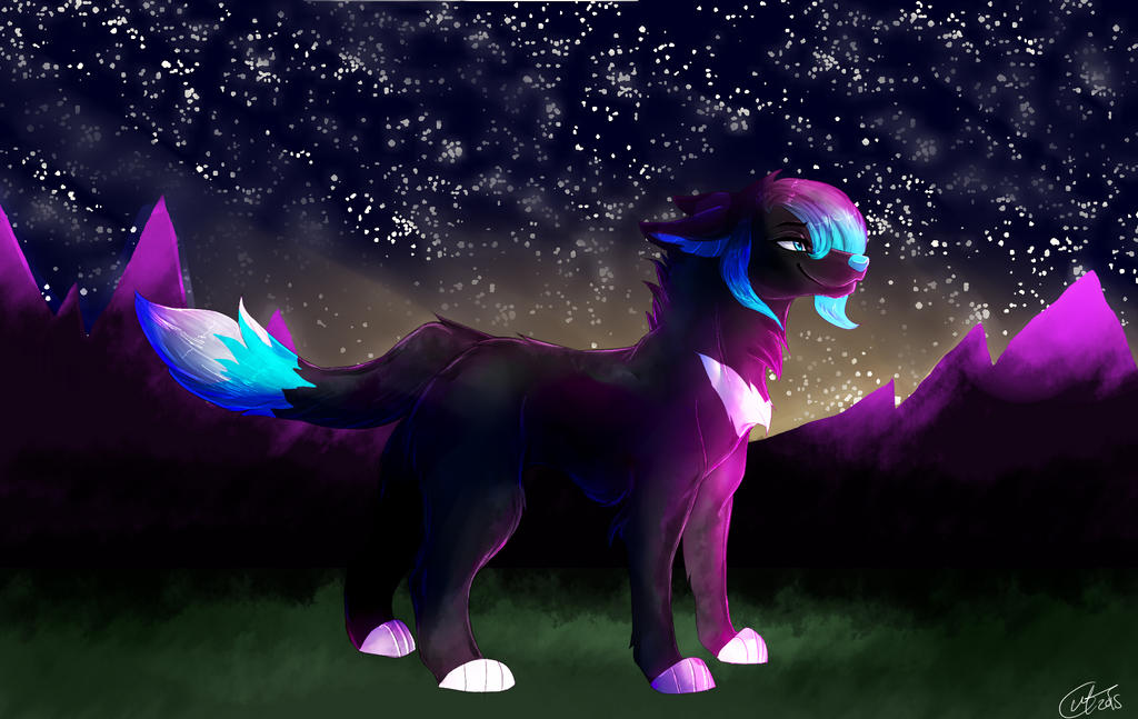 Kaily`s stary night by keyace