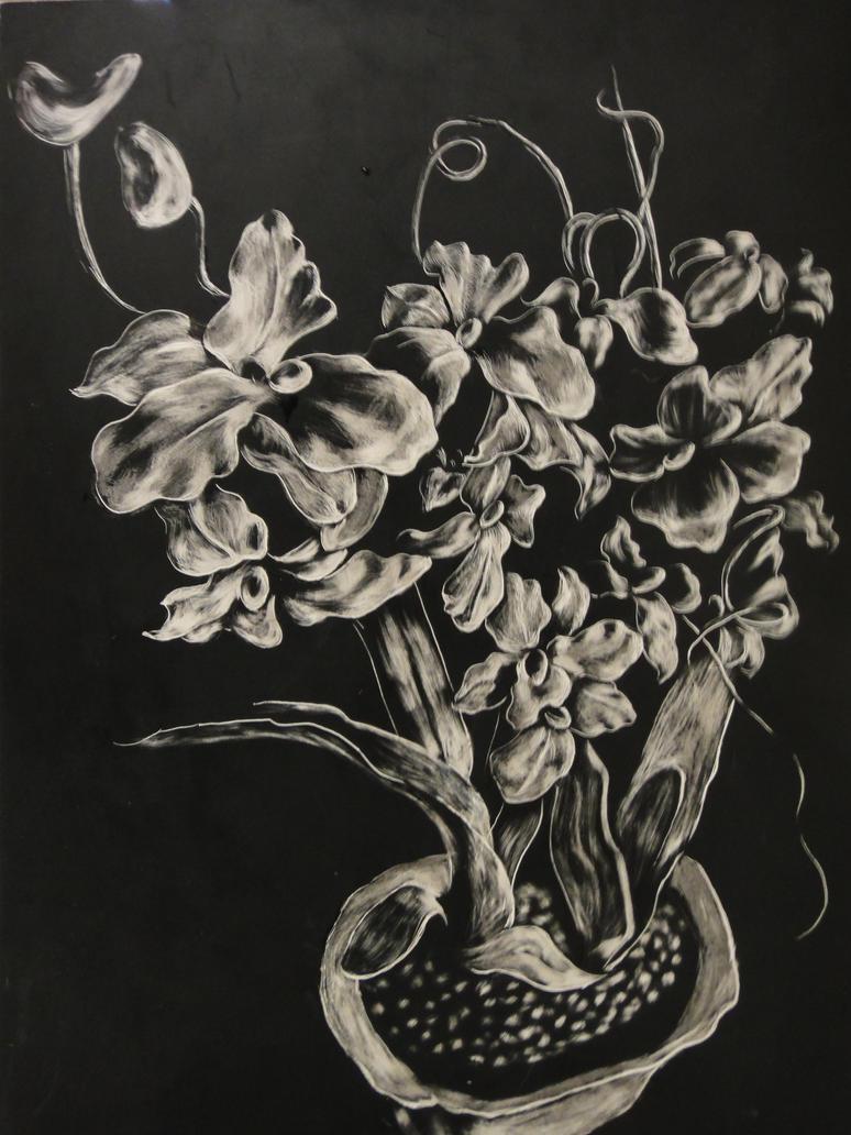 Scratch Art Flowers By Heathcliff1019