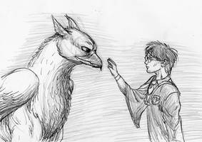 How to train your hippogriff
