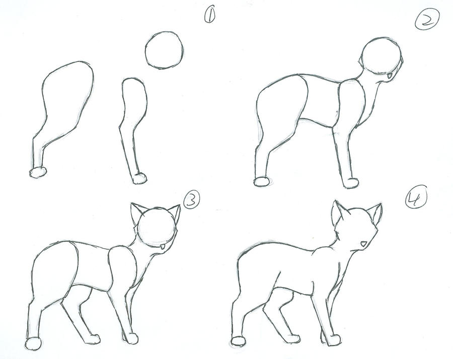how to draw a warrior cat kit step by step