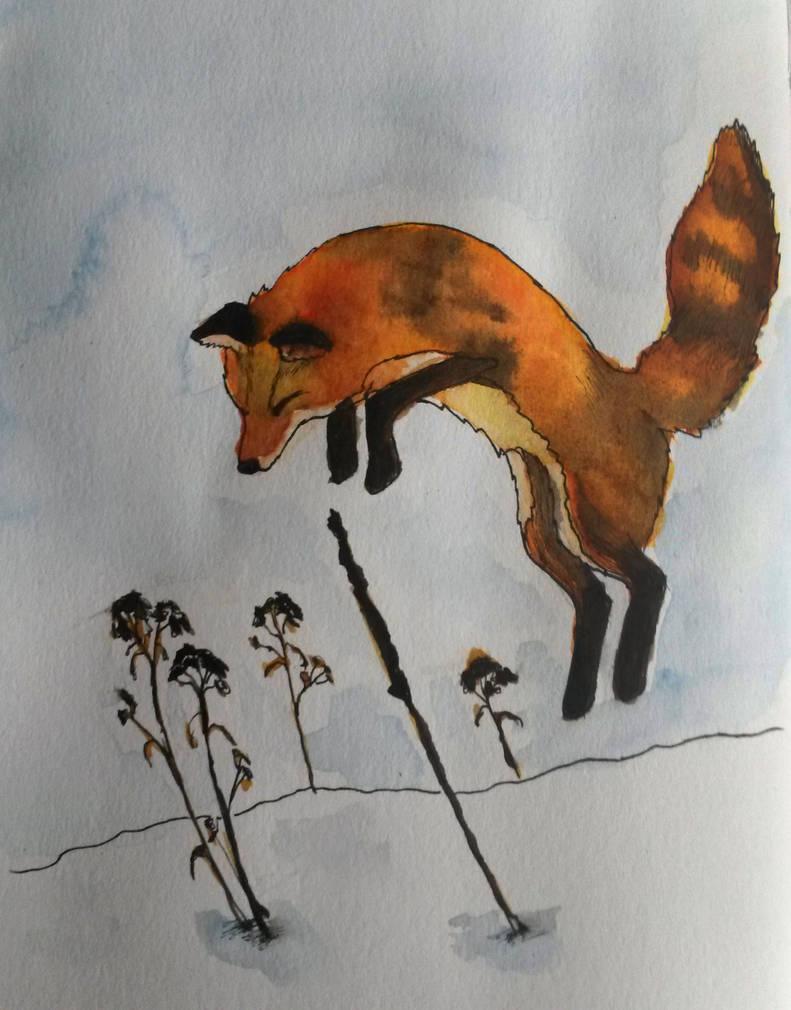 Fierce little fox