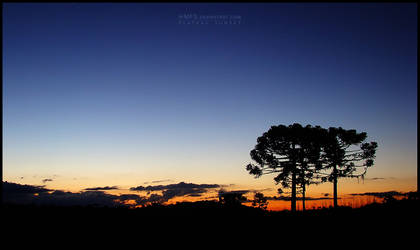 Plateau Sunset by Miguel-Santos