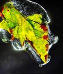 Cryo Leaf by Miguel-Santos