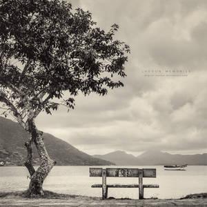 Lagoon Memories