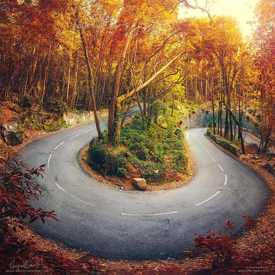 Bending Seasons by Miguel-Santos