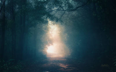 Into the Light: STOCK + WALLPAPER