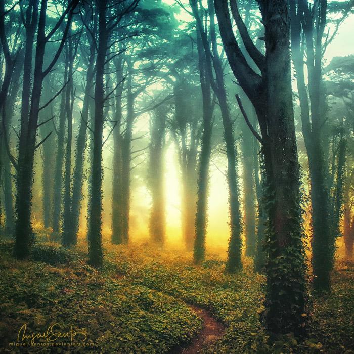 Radiant by Miguel-Santos
