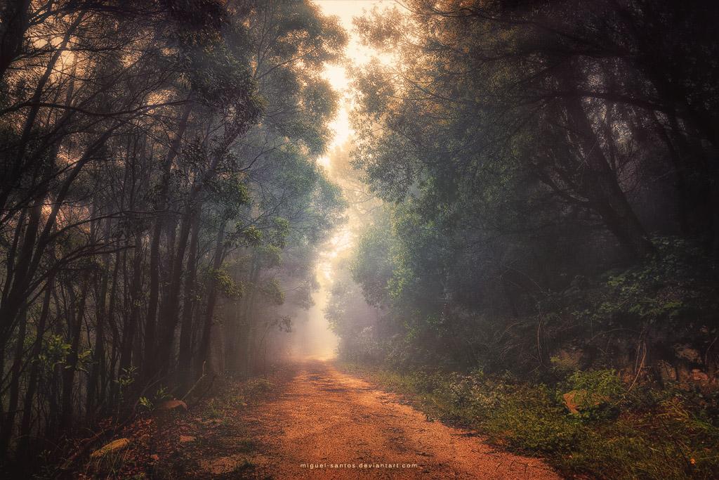 Into the Future by Miguel-Santos