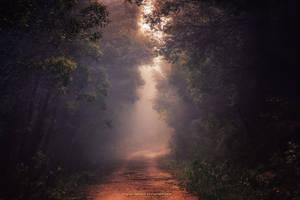 Into the Silver by Miguel-Santos