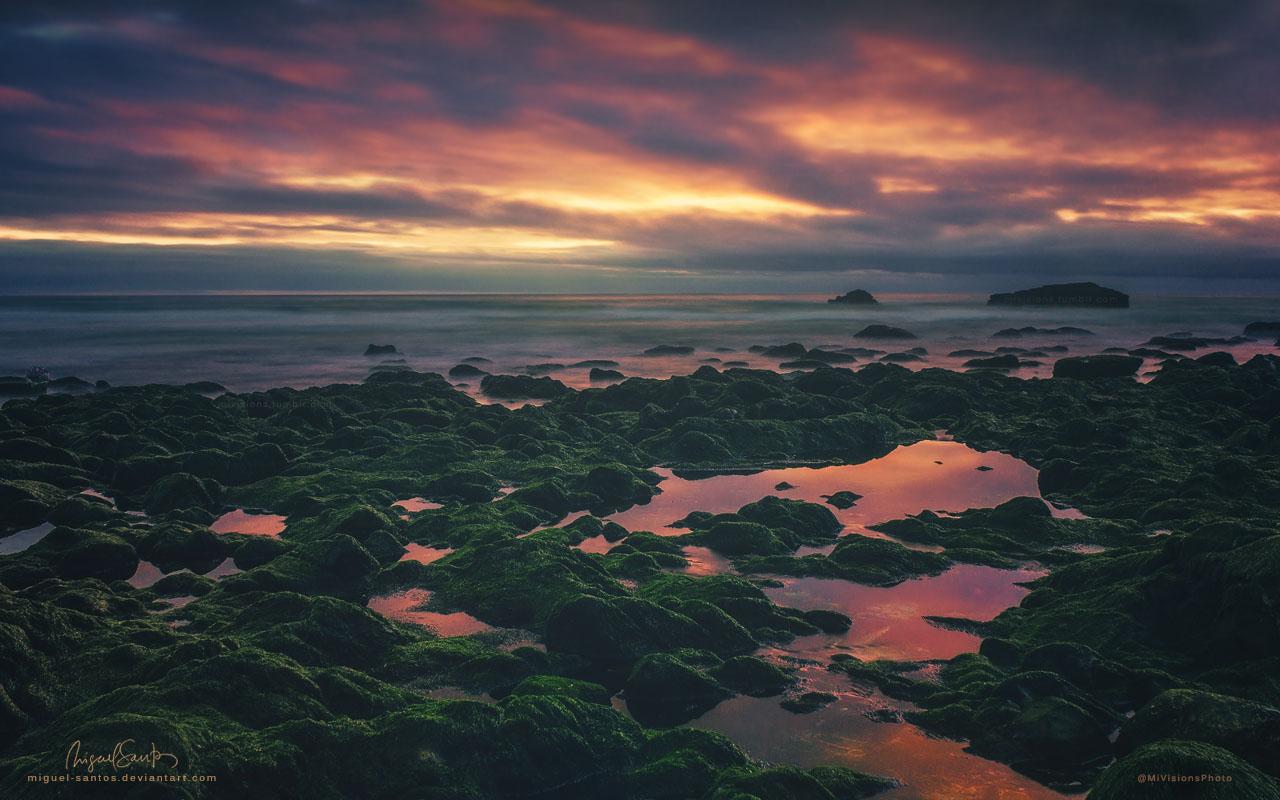Spirits of the Ocean by Miguel-Santos
