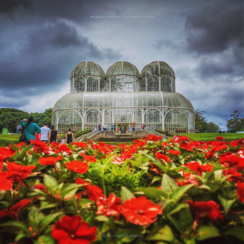 Stormy Gardens by Miguel-Santos