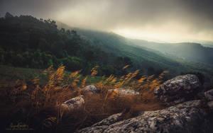 Written in Wind by Miguel-Santos