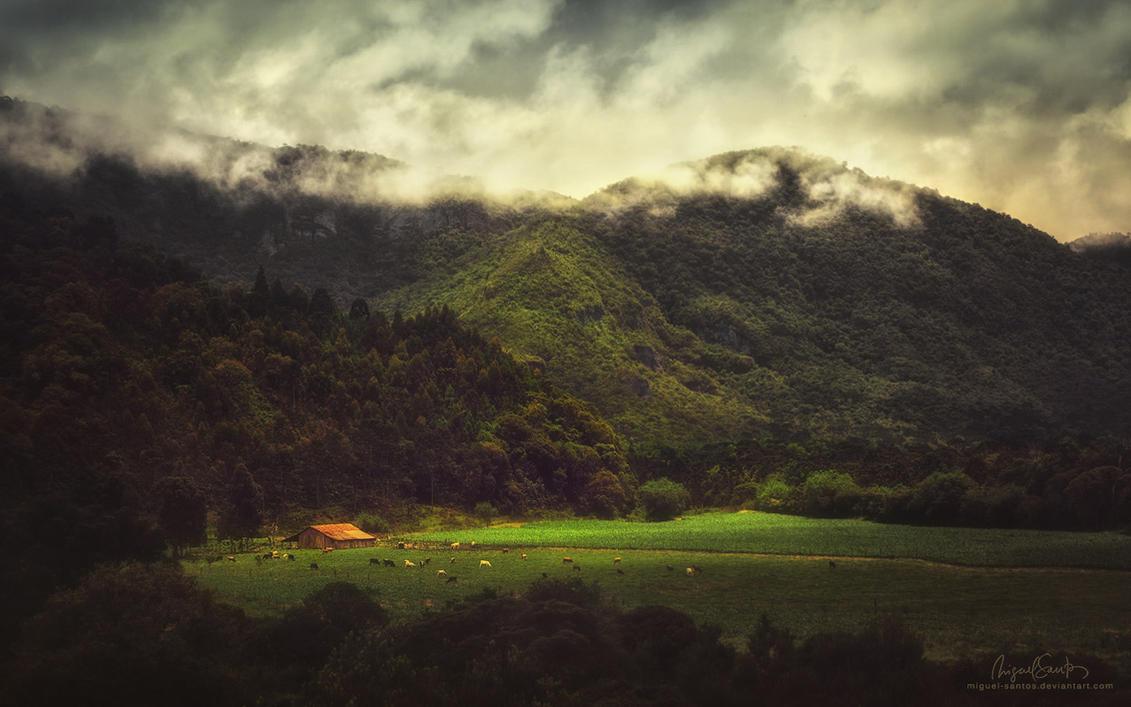 Shadows of the Valley by Miguel-Santos