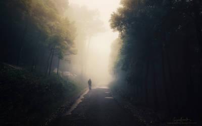 Walk Through Darkness by Miguel-Santos