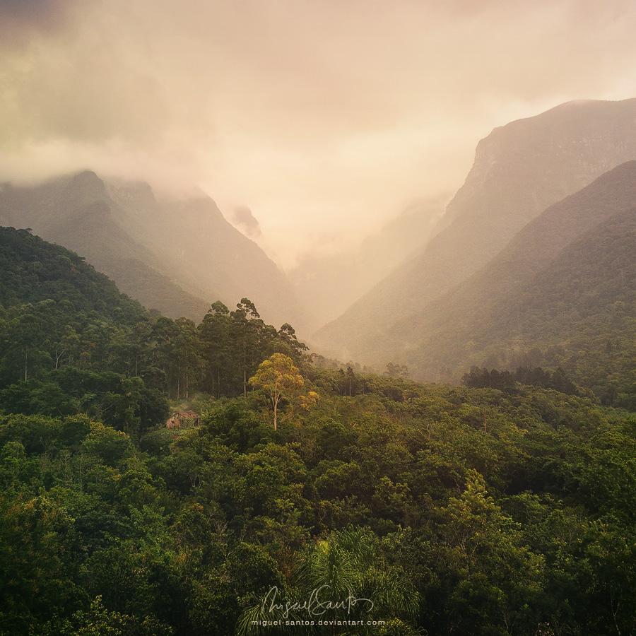 Natural Mystic by Miguel-Santos