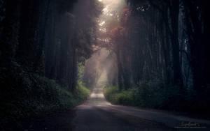 Perpetual Twilight by Miguel-Santos
